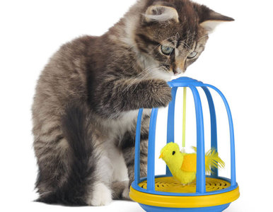interactief kattenspeelgoed Bird in a cage