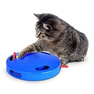 interactief kattenspeeltje